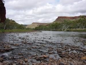 río, piedras
