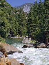 Fluss, Bäche, Bäume, Wälder