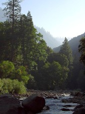 river, valleys, canyons, pinetrees