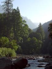 rivières, des vallées, des canyons, des pins