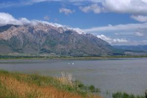 pittoresque, ours, rivière, migrateur, oiseau, refuge, Brigham, ville, Utah