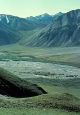escénico, Sheenjek, río, valle