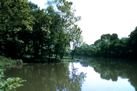 stream, Alabama