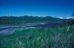 summer time, river, scenics