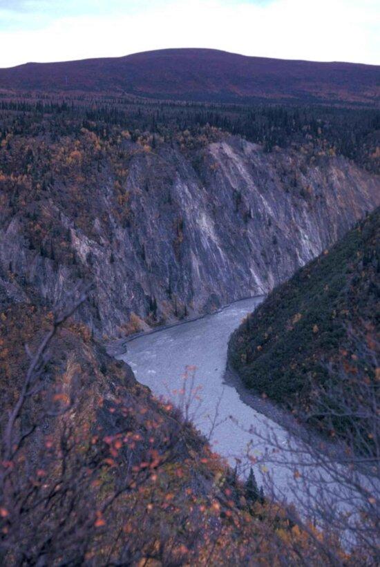 susitna, river, canyon