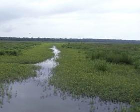 Tensas, fiume