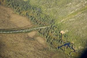 trans, Alaska, Pipeline, kreuzung, wild, Fluss