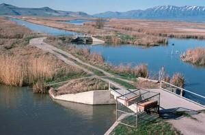 Wasser, Steuerung, Struktur