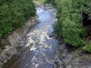 eau, écoulement, arbres