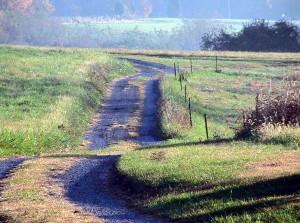 land, lane