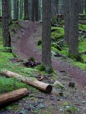 breen, stien, fjell
