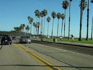 santa, barbara, palm trees, road