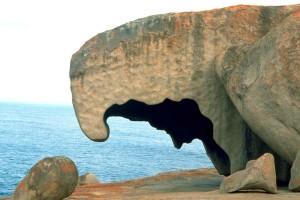 kangaroo, island, rock, formation