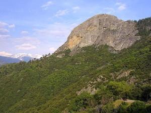 moro, roche, séquoia, parc, le granit, les forêts