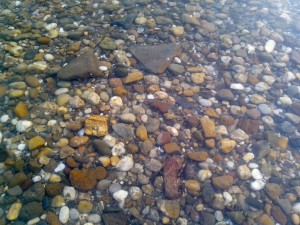 pebbles, river, clear, water