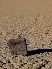 veddeløpsbanen, playa, skyve, steiner, gjørme