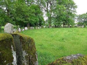 pierre, cercles, grange, Irlande, arbres, mousse, roches