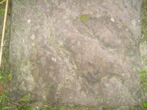 หิน หญ้า