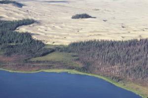 aerial, nogahabara, sand, dunes