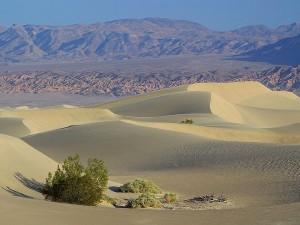 dood, vallei, woestijnen, zand, duinen
