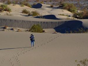 déserts, sable, dune