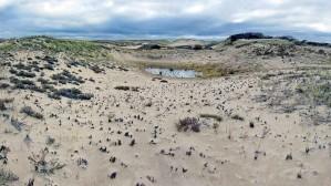 dunes, parker, rivière, désert, refuge