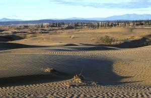 nogahabara, arena, dunas, pintorescos
