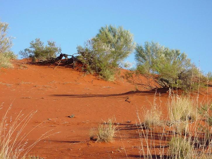 червен, пясък, дюни, carnarvon