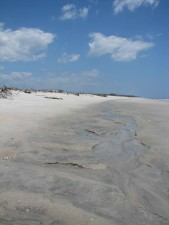 sable, dunes, rivage