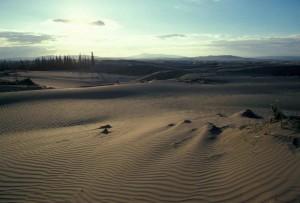 sabbia, dune, alba, senic