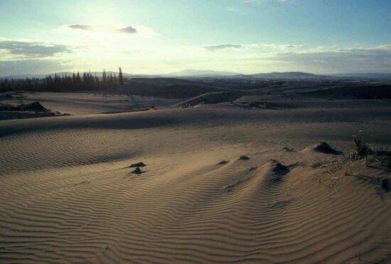 sand, dunes, sunrise, senic