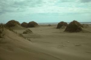sable, dunes, Nunivak, île