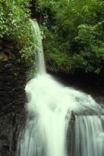 scénique, cascade, cascade, rochers