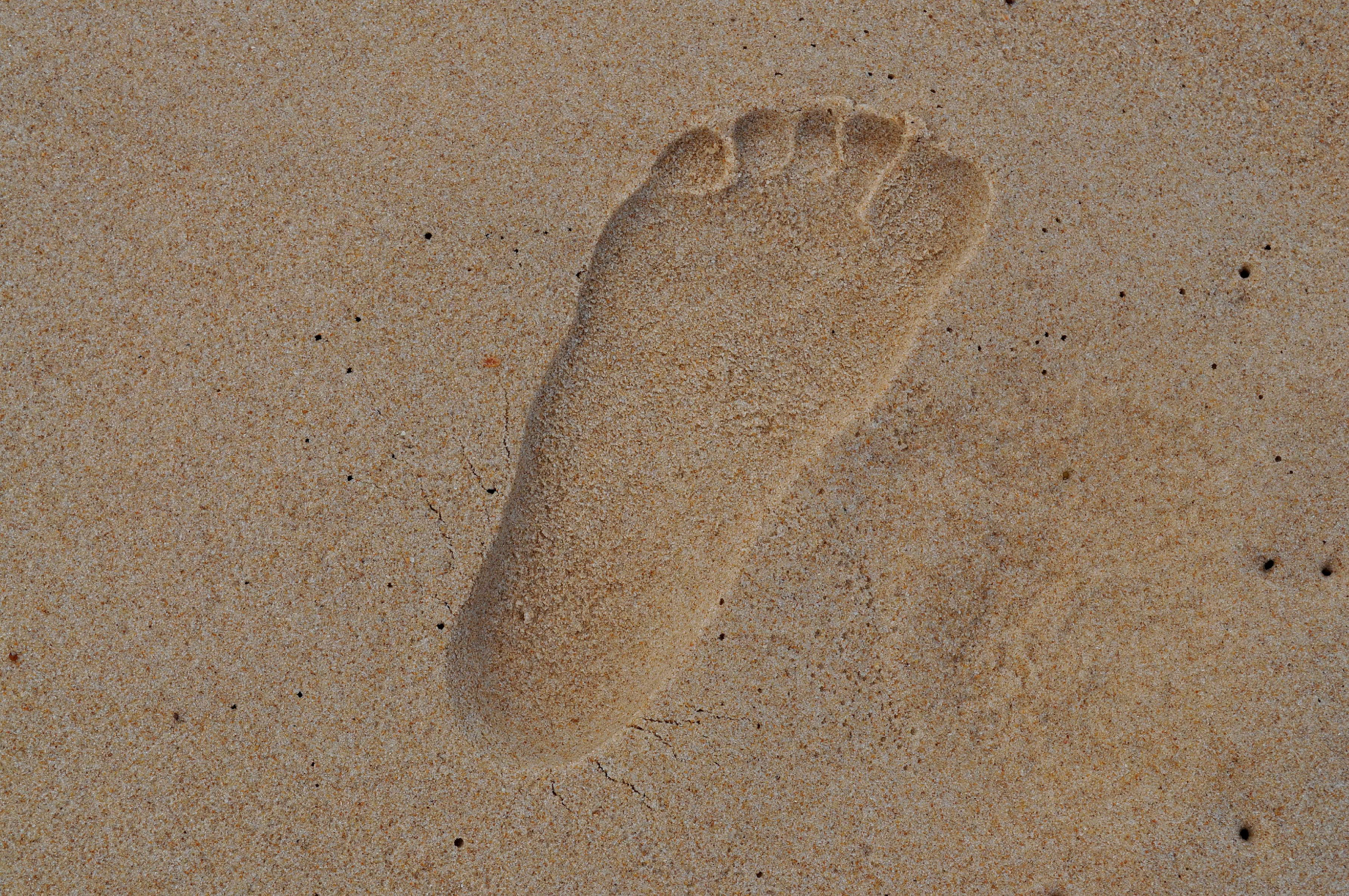 Free photograph; footprint, sand