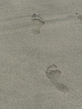 footprints, human, beach, sand