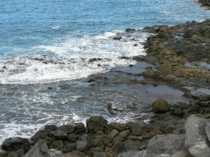 rocosa, mar