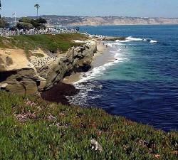 mer, côte, paysage
