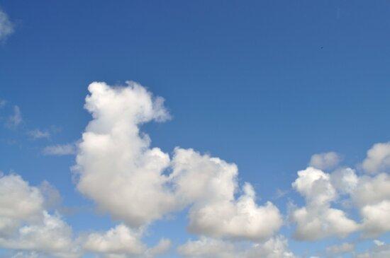 Wolken, Himmel, Foto