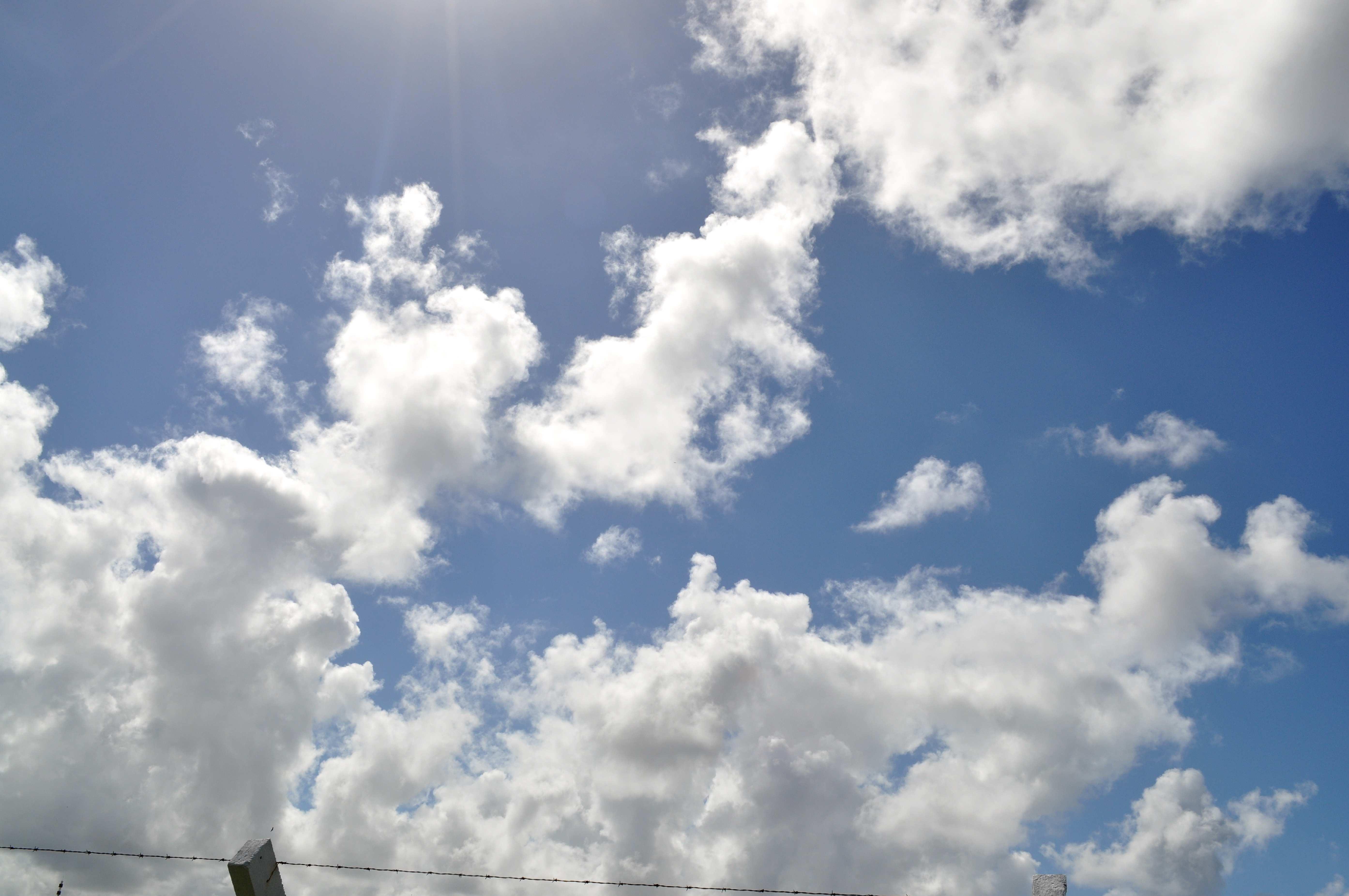 Free photograph; sky, look