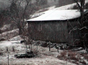 tôt, matin, tempête de neige