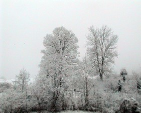 snowy, hillside