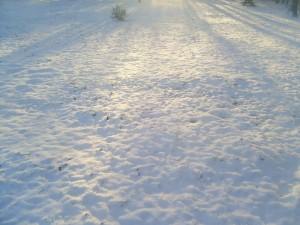 sol, neve, raios, manhã