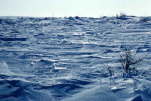 hiver, neige, scénique