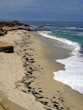 해변, 여름