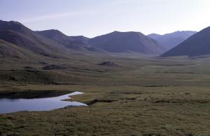 camp, ruisseaux, gamme, vallée, été