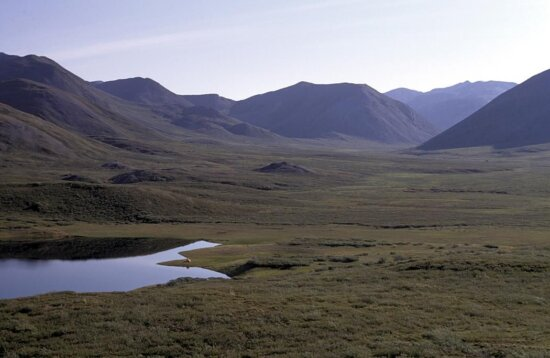 camp, brooks, range, valley, summer