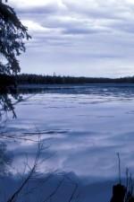 돌리, varden, 호수, 여름