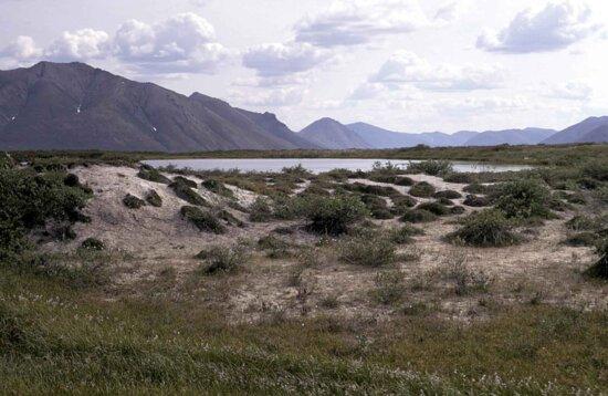 грязі, потік, області, літо