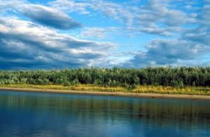 rivière, été, scénique