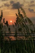 tôt, le lever du soleil, côte